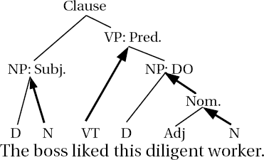 Noun phrase structure diagram showing head projection ccuart Gallery