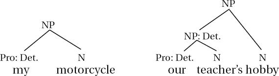 Noun phrase structure genitive pronoun diagrams ccuart Choice Image